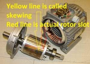 What is Skewing of an Induction Motor?