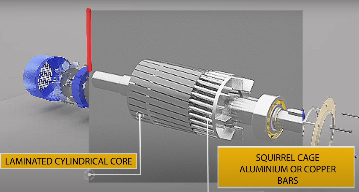 What is Squirrel Cage Rotor-min
